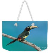 Green Aracari On Branch Weekender Tote Bag