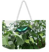 Green Banded Butterfly Weekender Tote Bag