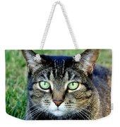 Green Cat Eyes In Summer Grass Weekender Tote Bag