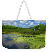 Green Cay Nature Preserve Beauty Weekender Tote Bag