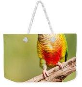 Green-cheeked Conure Pyrrhura Molinae Weekender Tote Bag