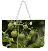 Green Cherry Tomatoes On The Vine Weekender Tote Bag