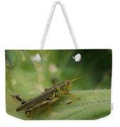 Green Closeup Grasshopper Weekender Tote Bag