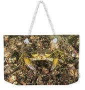 Green Crab Weekender Tote Bag