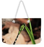 Green Dragonfly On Grass Square Weekender Tote Bag