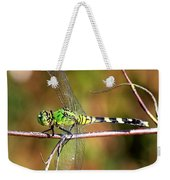 Green Dragonfly On Twig Square Weekender Tote Bag