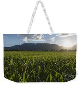 Green Field In Sunset Weekender Tote Bag