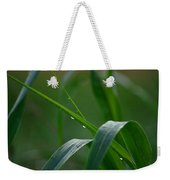 Green Grass Of Summer Weekender Tote Bag