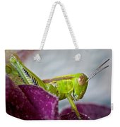 Green Grasshopper I Weekender Tote Bag