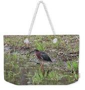 Green Heron Along Shore Weekender Tote Bag