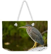 Green Heron Pictures 378 Weekender Tote Bag