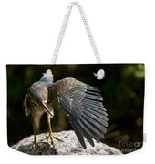 Green Heron Pictures 382 Weekender Tote Bag