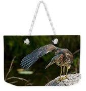 Green Heron Pictures 386 Weekender Tote Bag