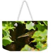Green Heron Pictures 430 Weekender Tote Bag