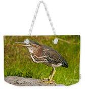 Green Heron Pictures 449 Weekender Tote Bag