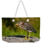 Green Heron Pictures 457 Weekender Tote Bag