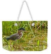 Green Heron Pictures 545 Weekender Tote Bag