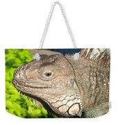 Green Iguana Face Weekender Tote Bag
