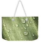 Green Leaf With Raindrops Weekender Tote Bag