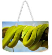 Green Mamba Coiled Up On A Branch Weekender Tote Bag