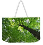 Green Maple Canopy Weekender Tote Bag
