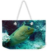 Green Moray Eel With Cleaning Fish Weekender Tote Bag