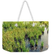 Green Natural Beauty Weekender Tote Bag
