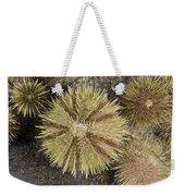 Green Sea Urchins Weekender Tote Bag