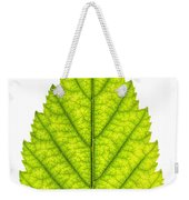 Green Tree Leaf Weekender Tote Bag