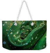 Green Tree Python Curled Weekender Tote Bag