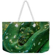 green tree python Macro Weekender Tote Bag
