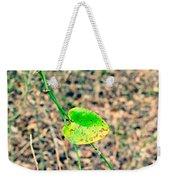 Greenbriar Weekender Tote Bag