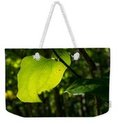 Greenbrier Glowing In The Sun Weekender Tote Bag
