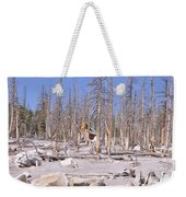 Lonely Cabin Weekender Tote Bag