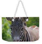 Grevy Zebra Weekender Tote Bag