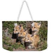 Grey Foxes At Den Weekender Tote Bag