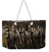 Grey Horses Weekender Tote Bag