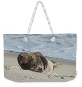 Grey Seal Pup On Beach Weekender Tote Bag