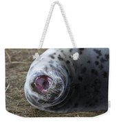 Grey Seal Pup Yawning Weekender Tote Bag
