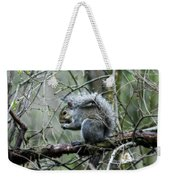 Grey Squirrel Weekender Tote Bag