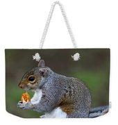 Grey Squirrel Tucking In Weekender Tote Bag