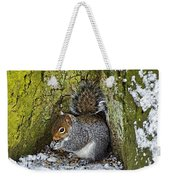 Grey Squirrel With Its Food Store Weekender Tote Bag