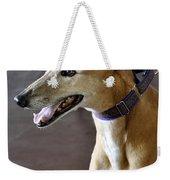 Greyhound Dog Weekender Tote Bag
