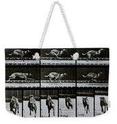 Greyhound Running Weekender Tote Bag