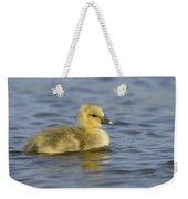 Greylag Goose Gosling Zeeland Weekender Tote Bag