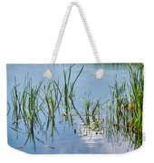 Greylake Reflections Weekender Tote Bag