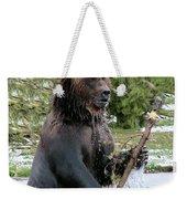 Grizzly Bear 6 Weekender Tote Bag