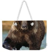 Grizzly Bear Female Looking For Fish Weekender Tote Bag