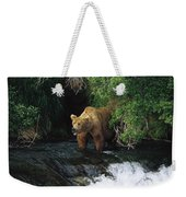 Grizzly Bear Fishing Brooks River Falls Weekender Tote Bag