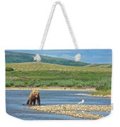 Grizzly Bear Stalking A Gull In The Moraine River In Katmai National Preserve-alaska Weekender Tote Bag